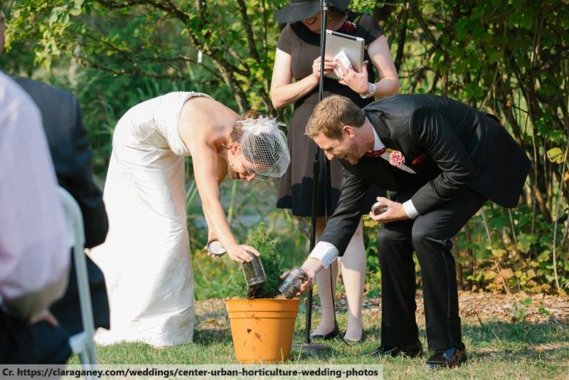 Tree Planting Ceremony, Wedding in Phuket